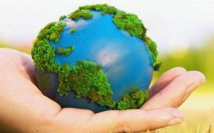 Frases sobre el cuidado del medio ambiente